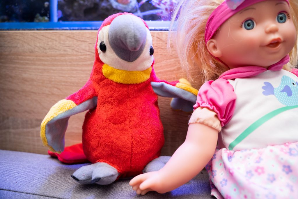 Lalka Zosia i gadająca papuga